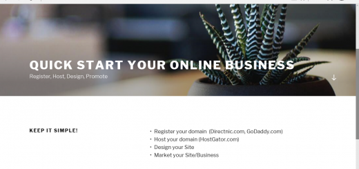Domain Registration, Basic Wordpress Site and Hosting 2