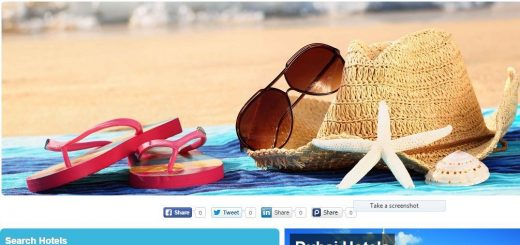 Automated Hotel and Travel Website Free Installation+Hosting 2